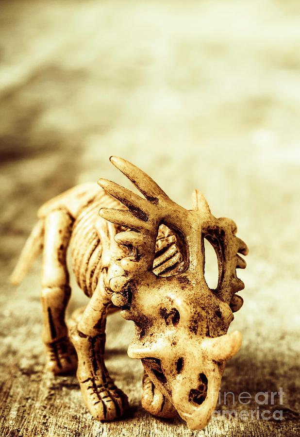 Exhibition Photograph - Model Styracosaurus Skeleton by Jorgo Photography - Wall Art Gallery