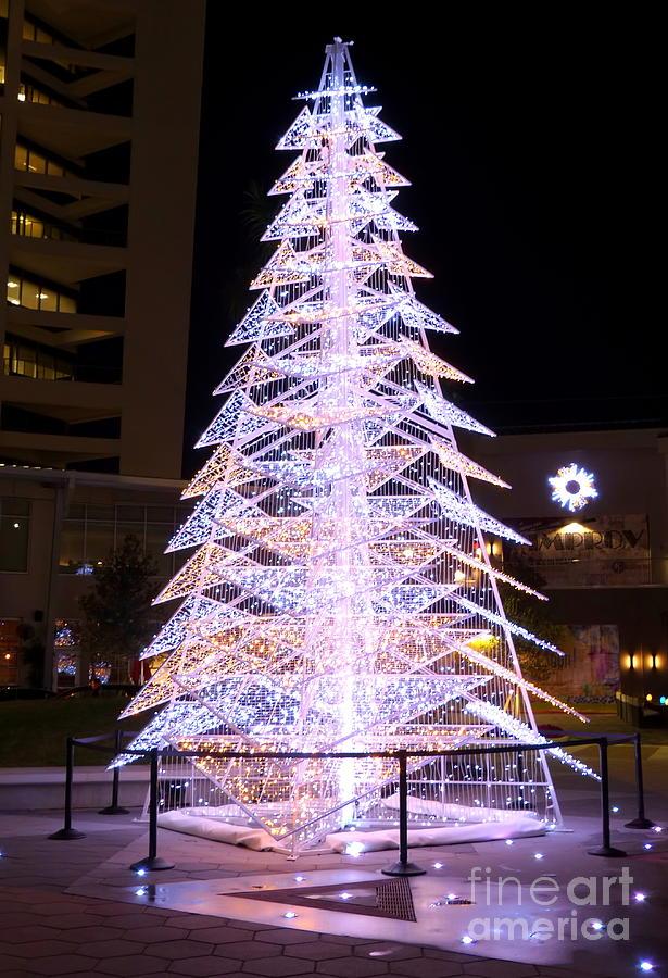 Modern Christmas Trees.Modern Christmas
