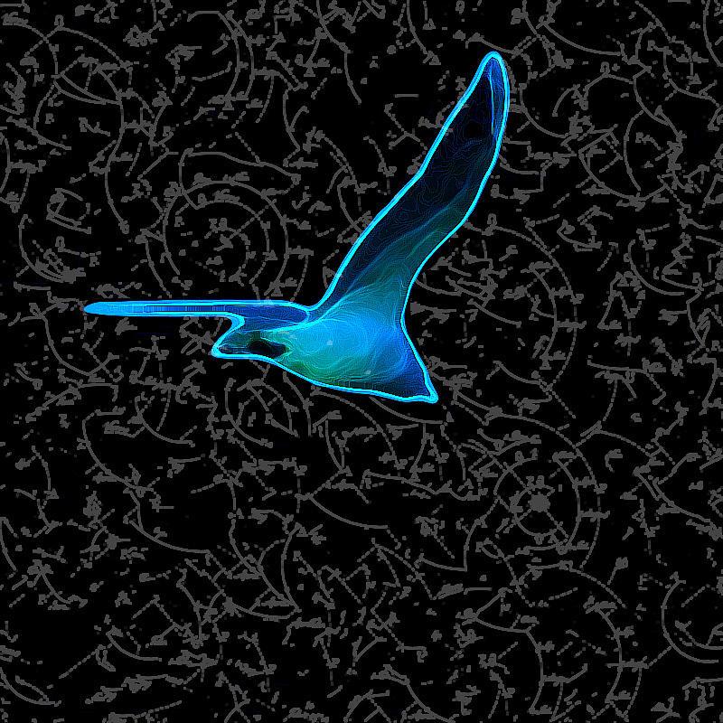 Moewe - Seagull Digital Art by Nils Denker