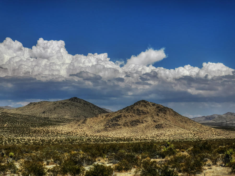 Mojave Desert California Photograph - Mojave 020 by Lance Vaughn