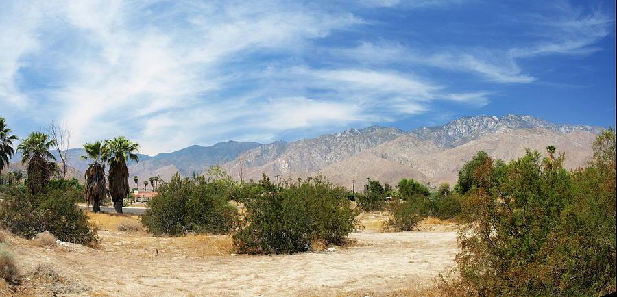 Desert Photograph - Mojave Pan 2 by Chuck Shafer
