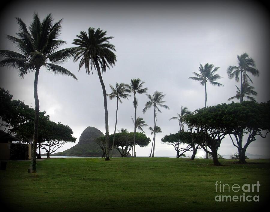 Oahu Photograph - Mokolii Chinamans Hat by Joy Patzner