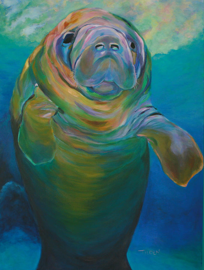 Marine Life Painting   Molly The Manatee By Linda Tilden