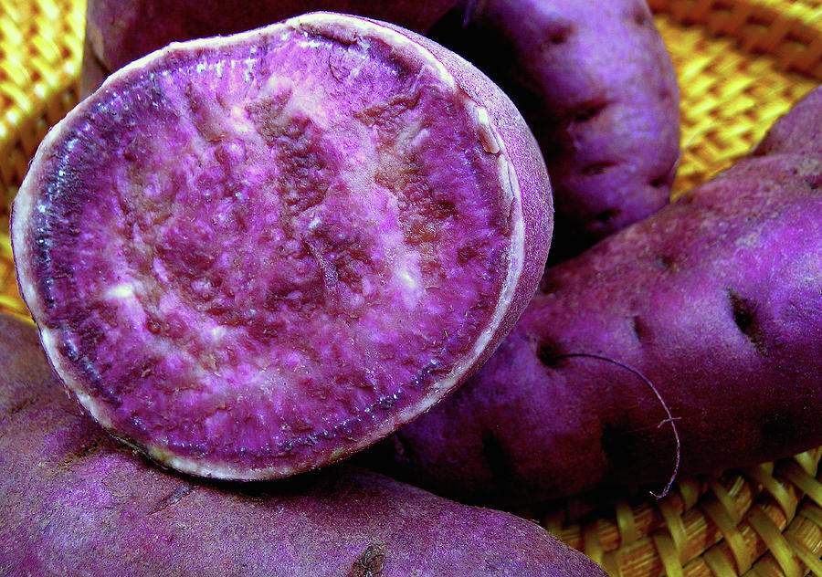 James Temple Photograph - Molokai Purple Sweet Potatoes by James Temple