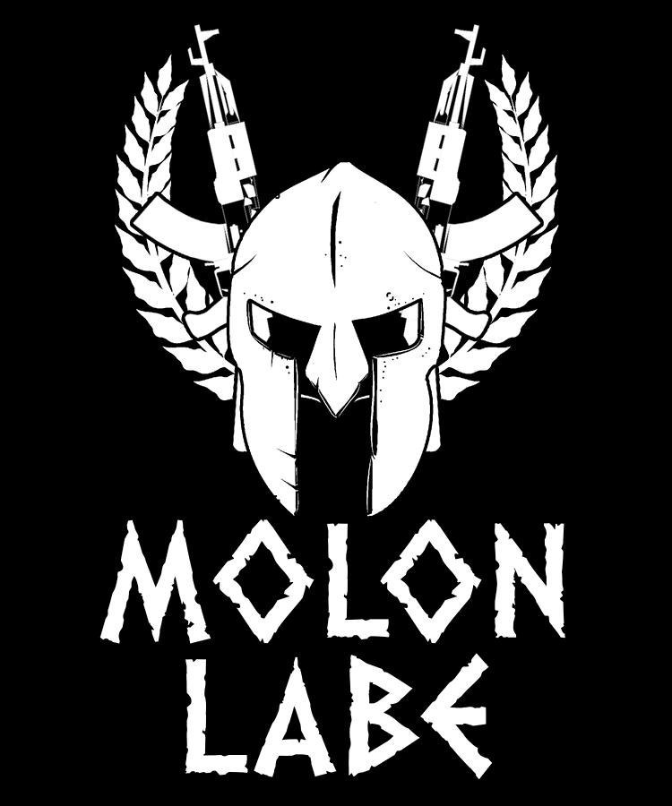 American Flag Digital Art - Molon Labe Spartan Warrior Helmet Rifles by Passion Loft