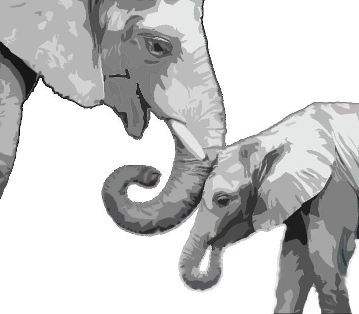 Mom And Baby Elephants Digital Art By Brianne Elliott