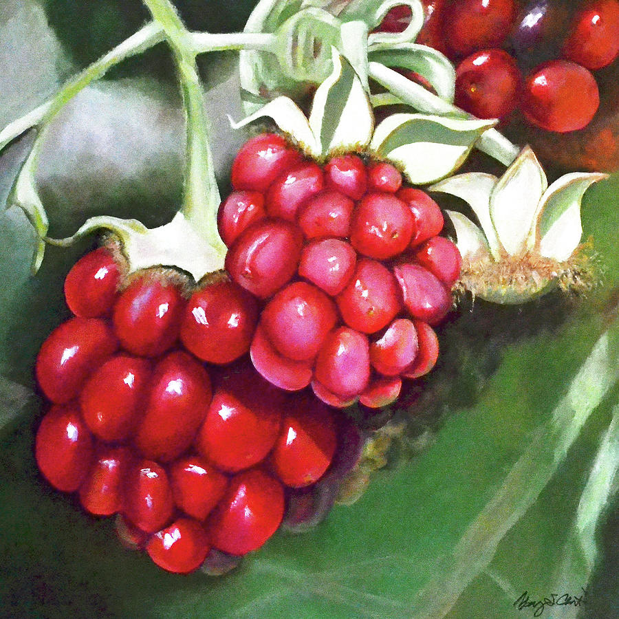 Berries Painting - Moment in the Sun - Berries by Mary Chant