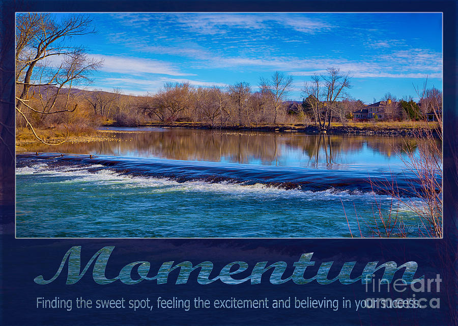 Momentum by Omashte by Omaste Witkowski