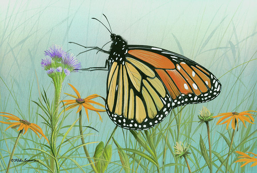 Monarch Butterfly Painting - Monarch Butterfly by Mike Brown