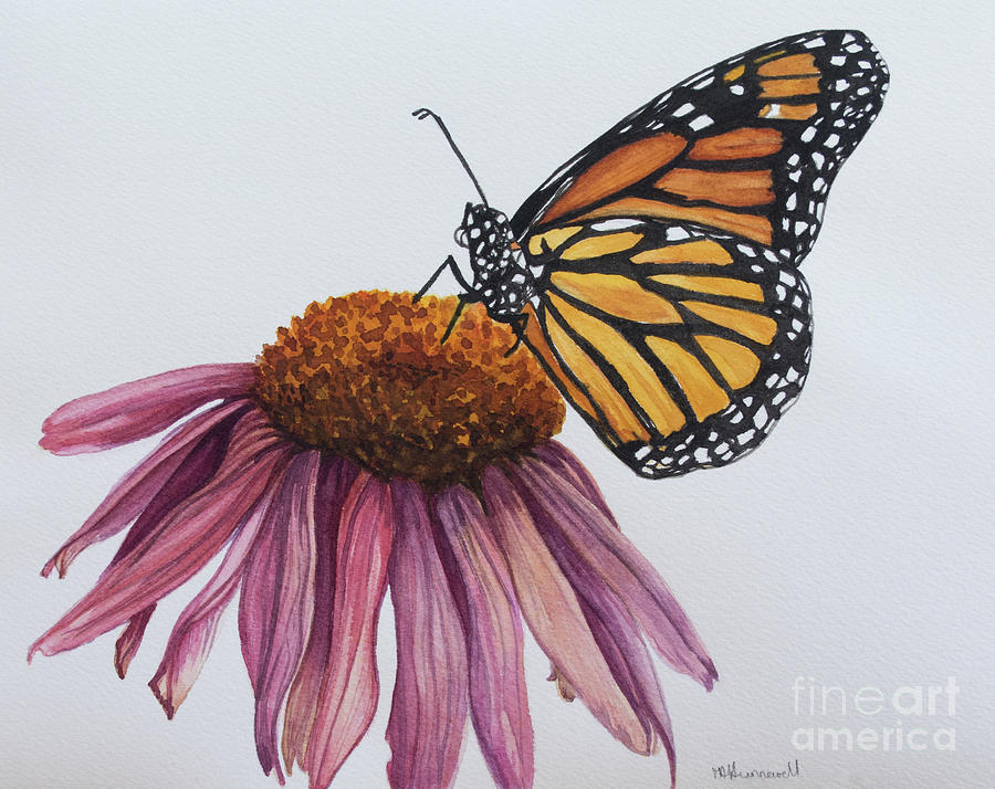 Monarch Butterfly On Cone Flower Painting
