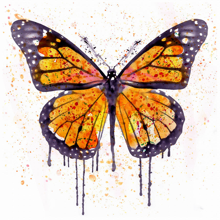 Monarch Butterfly Painting - Monarch Butterfly Watercolor by Marian Voicu