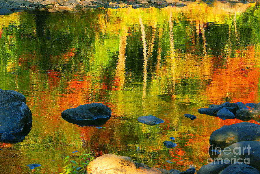 Lake Photograph - Monet Autumnal by Aimelle