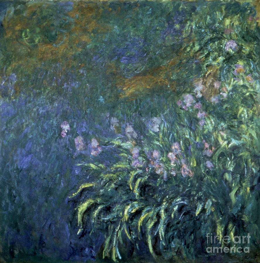 20th Century Photograph - Monet: Irises By The Pond by Granger