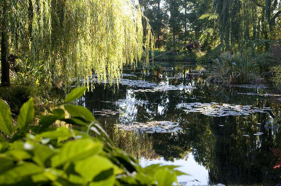 Giverny Photograph - MonetGarden 2543.jpg by Charles  Ridgway