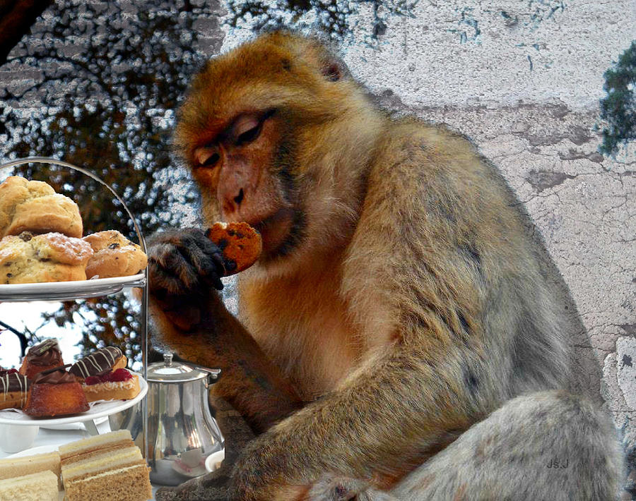 Mixed Media Photograph - Monkey Tea Party by Jan Steadman-Jackson
