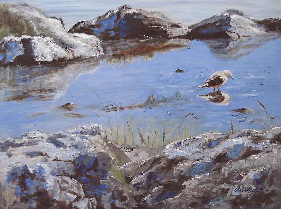 Animal Painting - Mono Lake by Barbara Andolsek