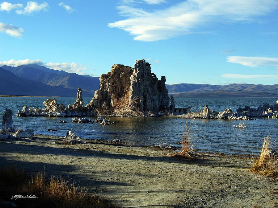 Mono Lake by Stephanie Salter