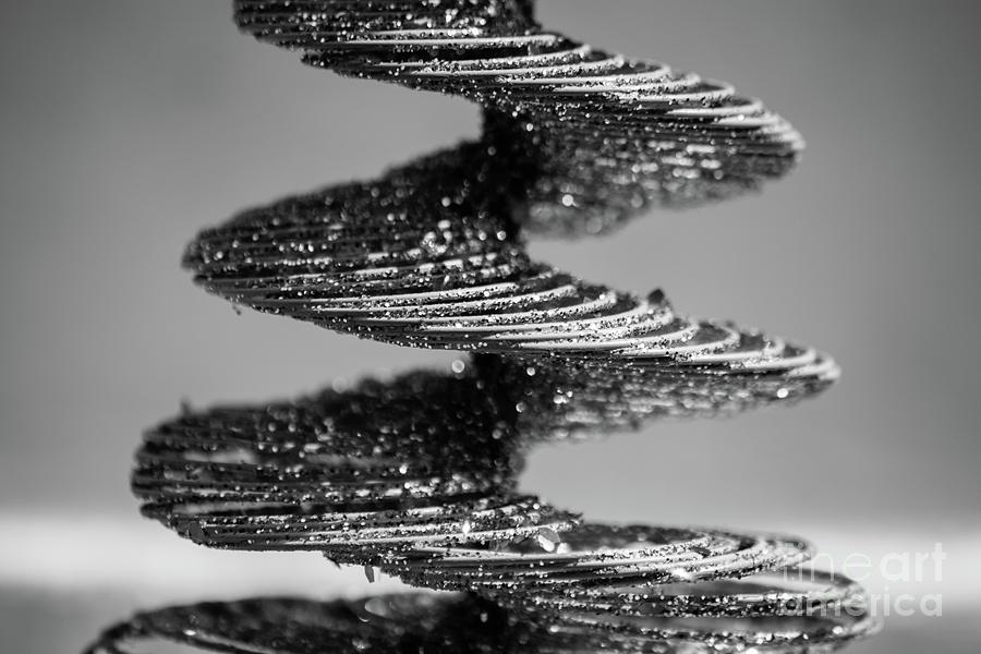 Monochrome Photograph - Monochrome Spiral by Cesar Padilla