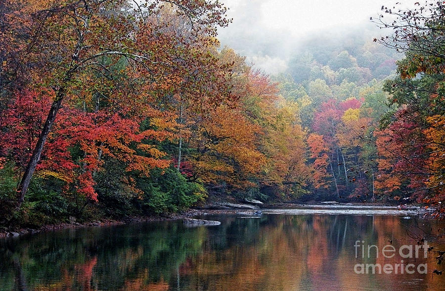 Fall Color Photograph - Monongahela National Forest by Thomas R Fletcher
