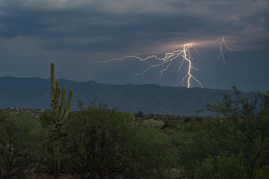 Monsoon Lightning by Dan McManus