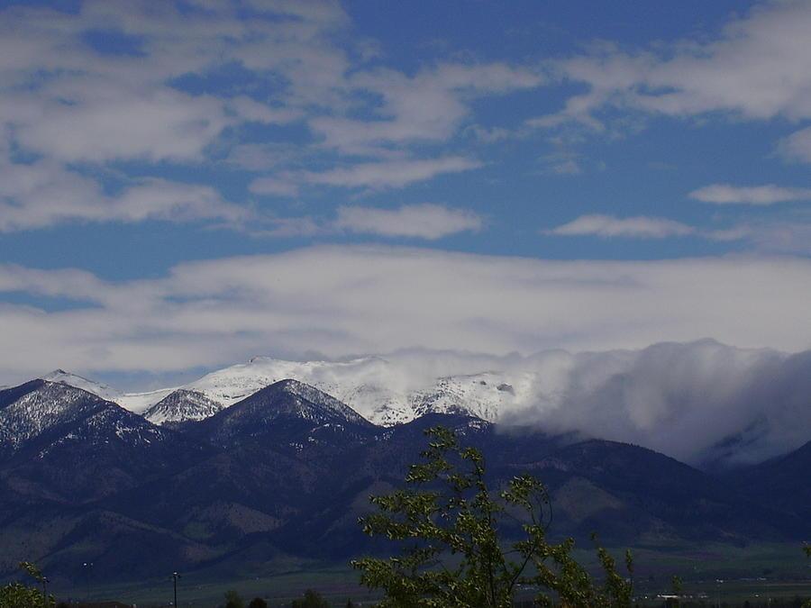 Landscape Photograph - Montana June by Yvette Pichette