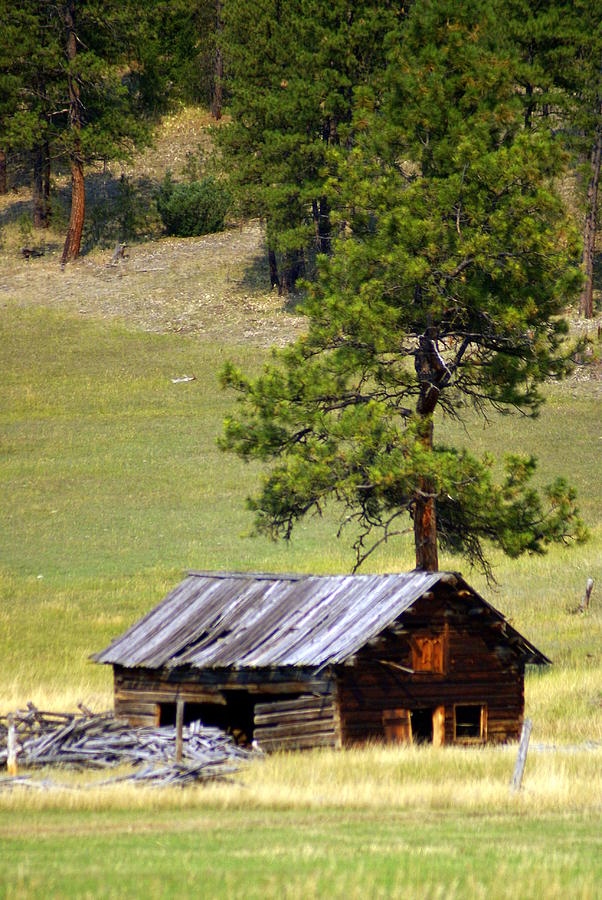 Ranch Photograph - Montana Ranch 2 by Marty Koch