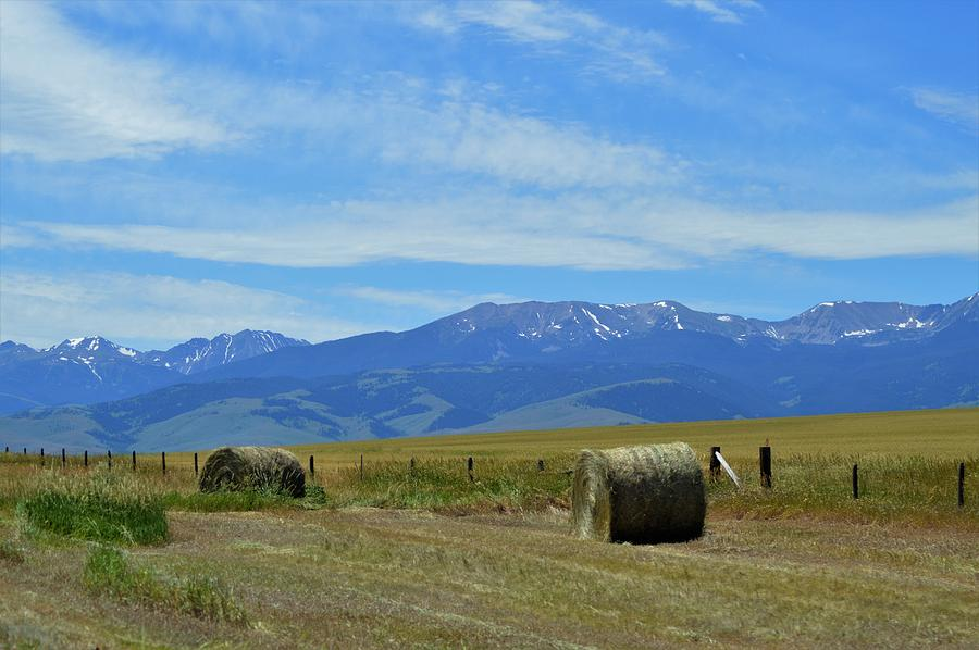 Montana scene by Michelle Hoffmann