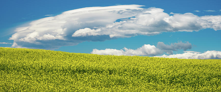 Montana Sky Photograph