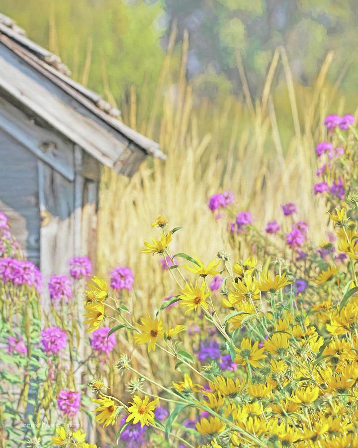 Montanas Summer Flowers Photograph