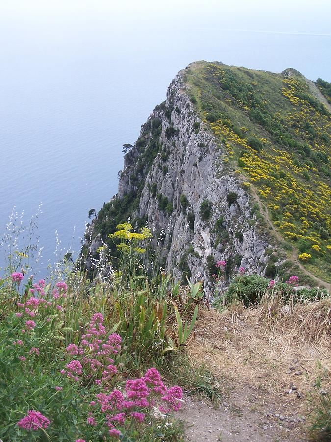 Capri Photograph - Monte Solaro by Adam Schwartz
