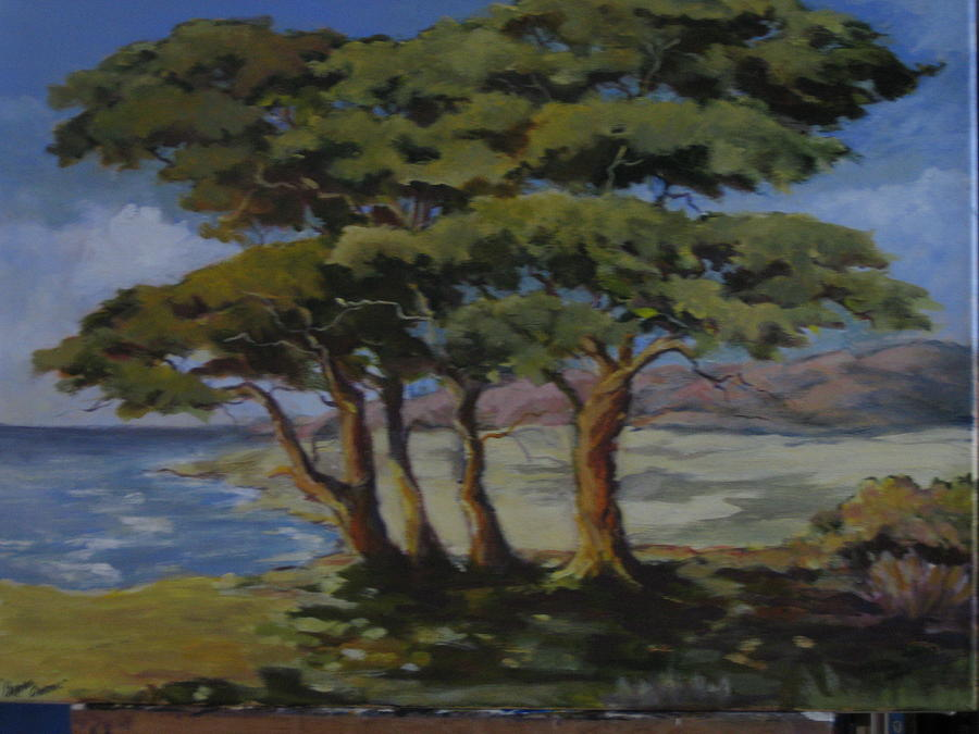 Monterey Bay Trees Painting by Barbara Moore