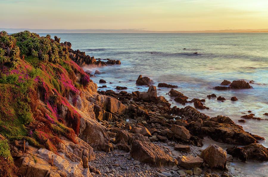 Monterey Coast In Spring Photograph