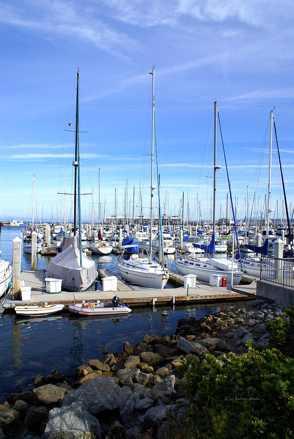 Monterey Photograph - Monterey Harbor California by Barbara Snyder
