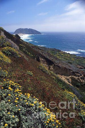 Monterey Bay Photograph - Monterey Monument by Michael Hyde