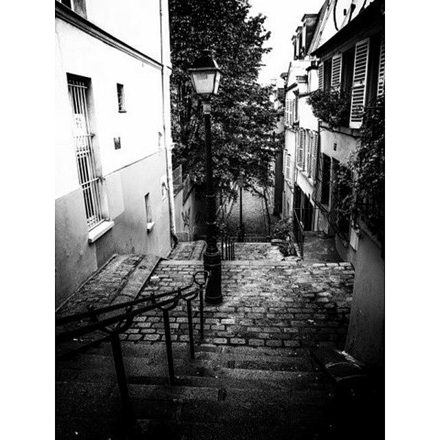 Beautiful Photograph - Montmartre Steps by Georgia Fowler