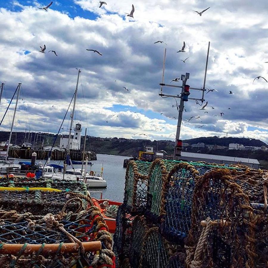 Scarborough Photograph - Moody Sea 🌊 #scarborough by Dante Harker
