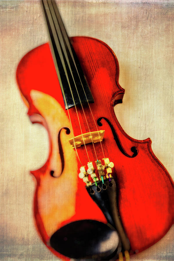 Fiddle Photograph - Moody Violin by Garry Gay