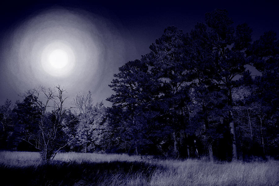 Dream Photograph - Moon And Dreams by Nina Fosdick