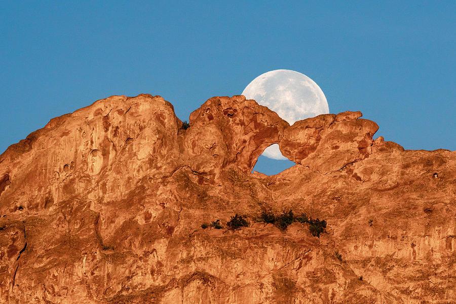 Moon Behind Kissing Camels