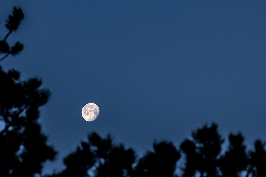 Moon Feb 25, 2016 Photograph