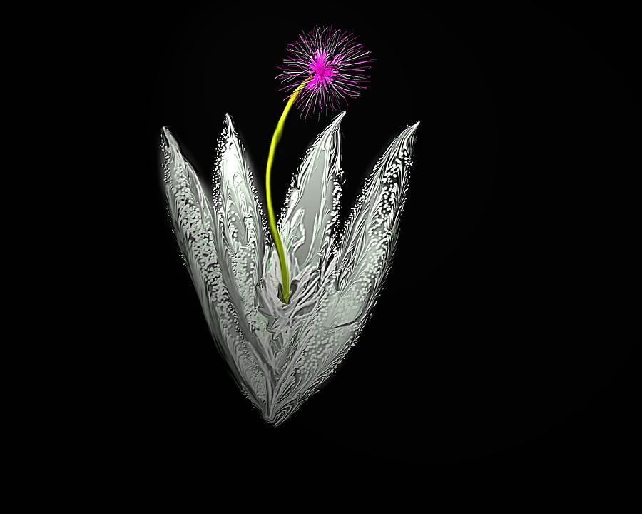 Abstract Digital Art - Moon Flower by John Mueller