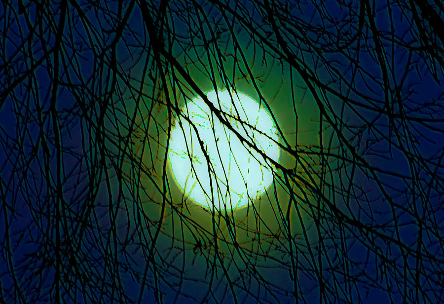 Moon Digital Art - Moon Of The Werewolf by DigiArt Diaries by Vicky B Fuller