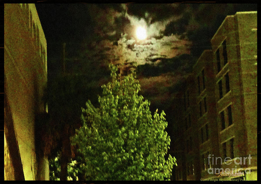 American South Photograph - Moon On Fire Over Downtown Savannah by Aberjhani