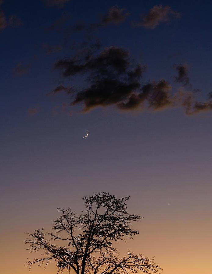 Moon Over Haigler Creek Photograph