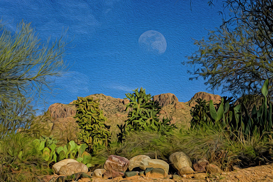 Moon Over Pusch Ridge Op33 Photograph