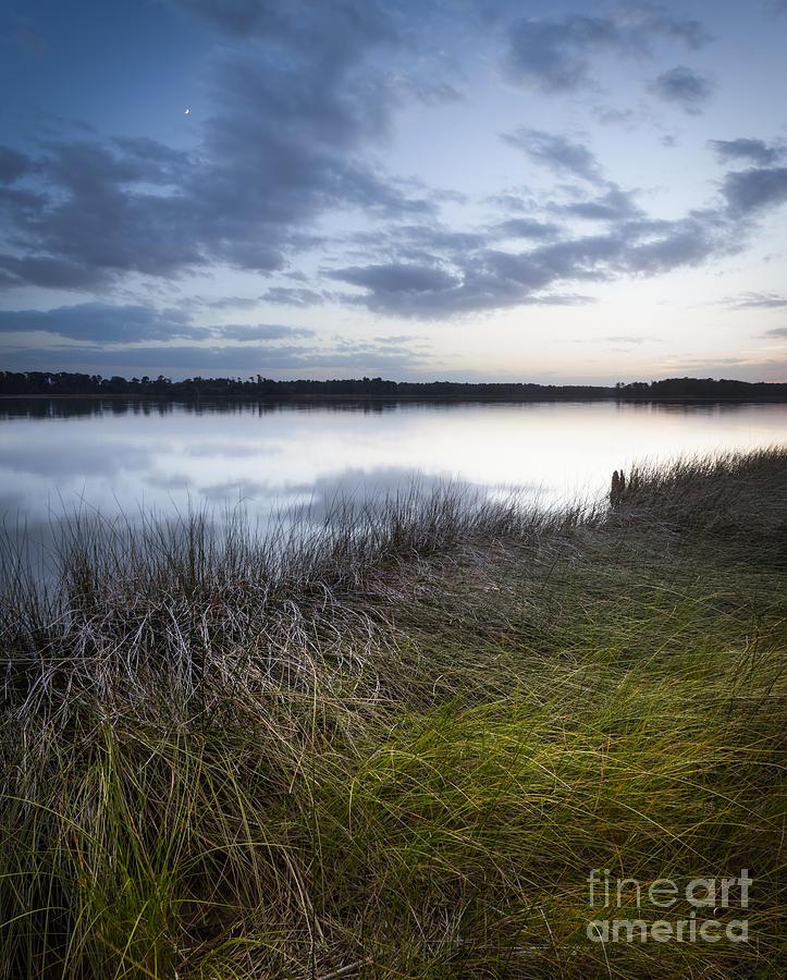 Hampton Roads Photograph - Moon Over The Marsh by Lisa McStamp