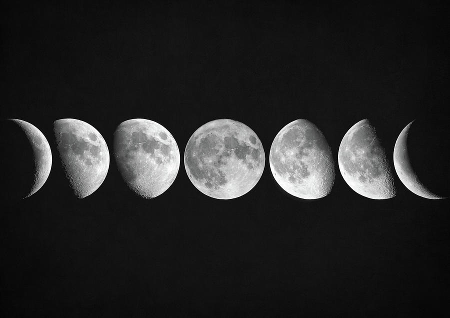 Moon Phases Digital Art