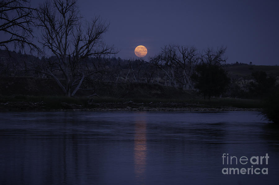 Landscape Photograph - Moon Rise Over The Tongue by Shevin Childers