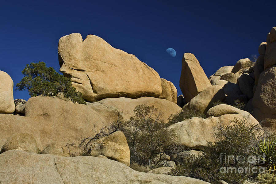 Moon Rising over Indian Rock by Photography by Laura Lee