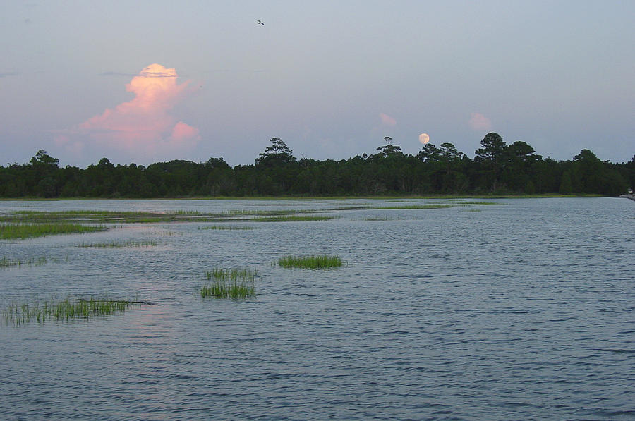 Marsh Photograph - Moon Rising Over The Inlet by Suzanne Gaff